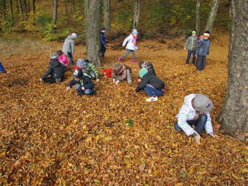 Podzimní aktivity školní družiny