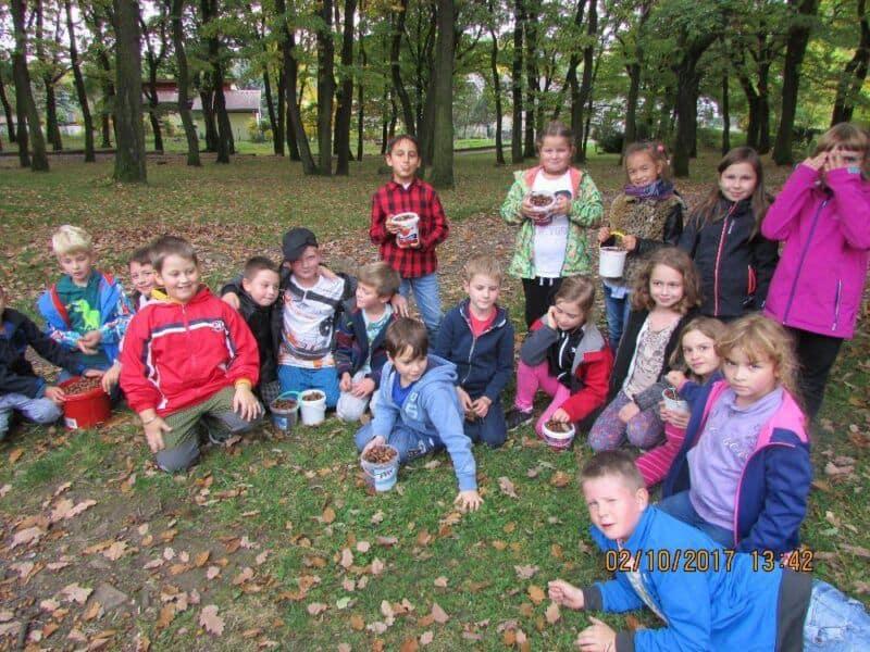 Podzimní činnosti a aktivity ve školní družině– odděleníVčelky