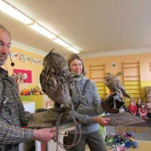 Galerie Cvičené sovy ve školní družině