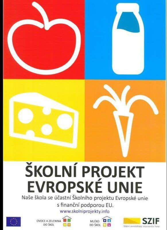 Školní projekt EU